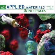 על השער: מחקר של ליהי אדלר-אברמוביץ על שער המגזין המדעי ACS Applied Materials & Interfaces