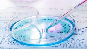 Metabolite and peptide assembly: Physiology, pathology and nanotechnology