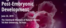 regeneration and post-embryonic development