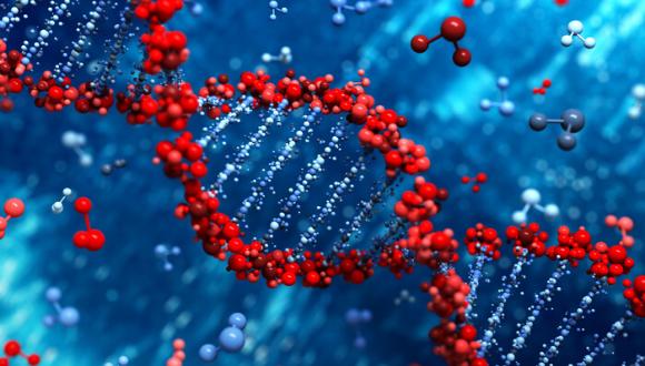 סמינר של החוג לגנטיקה מולקולרית של האדם וביוכימיה