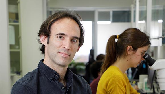 פוגשים חוקר: פרופ' עודד רכבי בשיחה על אפיגנטיקה