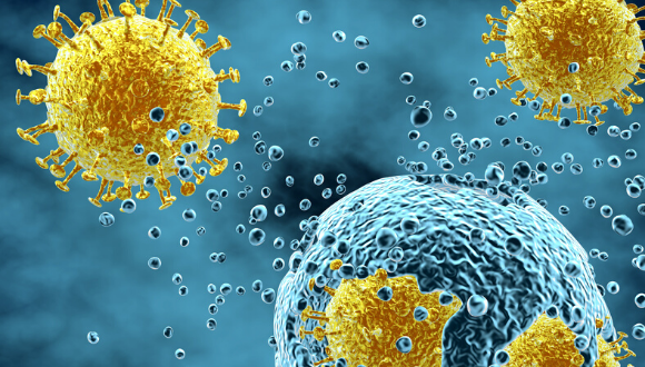 מחקר בחוג למיקרוביולוגיה ואימונולוגיה