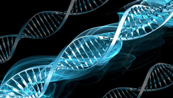 סמינר מצוינות מחקרית מחלקתית - המחלקה לגנטיקה מולקולרית ולביוכימיה 5.3.18