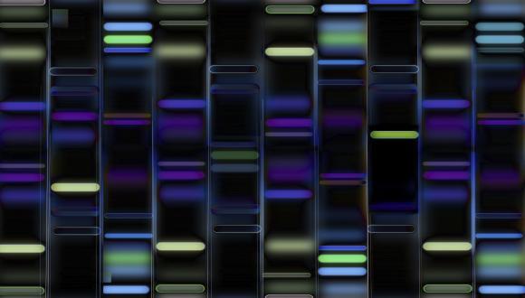 סמינר קבוצתי - המחלקה לגנטיקה מולקולרית ולביוכימיה 21.12.2015