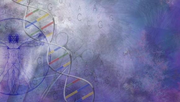 סמינר סטודנטים - החוג לגנטיקה מולקולרית של האדם ולביוכימיה 29.4.13