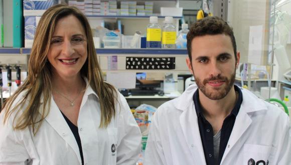 פרופ' קרן אברהם, ביחד עם שחר טייבר, סטודנט במדרשה לתארים מתקדמים, הצליחו לפתח טיפול שמצליח לתקן 100% מתאי השערה ולמנוע הידרדרות ברמת השמיעה גם בגיל מבוגר. המחקר בוצע על עכברים