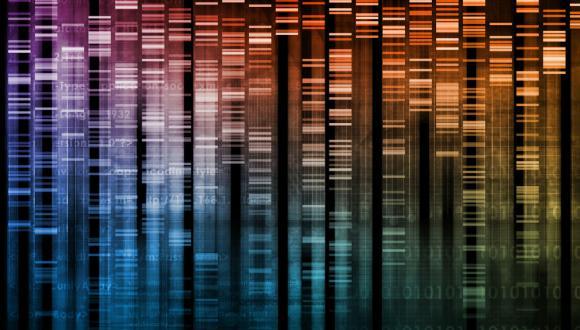 סמינר מחלקתי - המחלקה לגנטיקה מולקולרית של האדם ולביוכימיה 19.3.18
