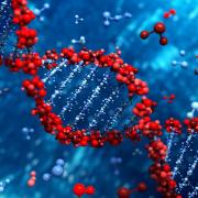 עמוד החוג לגנטיקה מולקולרית של האדם וביוכימיה
