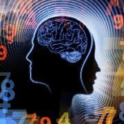 החוג לנוירולוגיה ונוירוכירורגיה